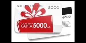 ������ ECCO